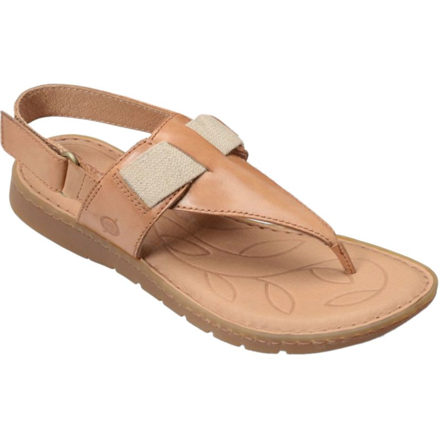 Perfect Born Sandals  Claudy Sandals