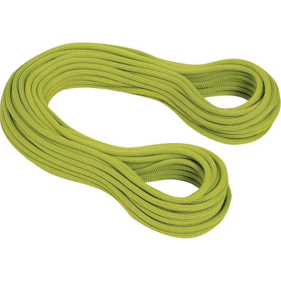 Mammut Infinity Dry Climbing Rope 9 5mm Up To 70 Off