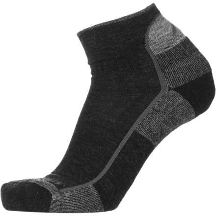 Shop for Darn Tough Merino Wool 1/4 Cushion Hiking Sock - Men's