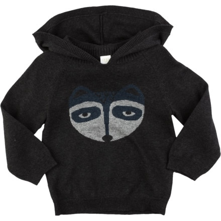 Egg Knit Raccoon Pullover Hoodie - Toddler Boys'