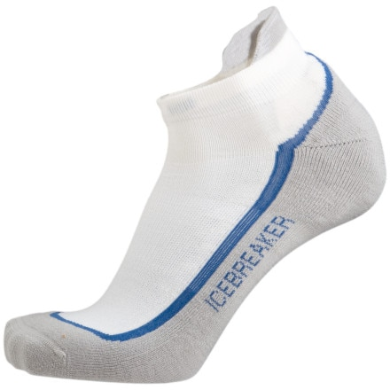 Icebreaker Bike/Run Lite Micro Sock - Men's
