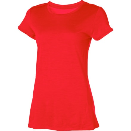 Shop for Icebreaker Tech Lite T-Shirt - Short-Sleeve - Women's