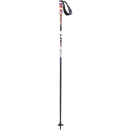 Shop for Salomon Brigade Ski Pole