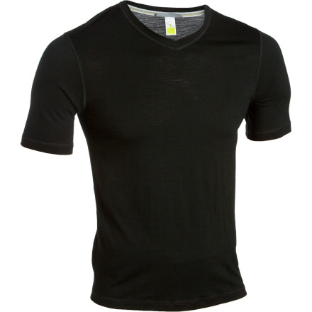 SmartWool NTS Microweight V-Neck Top - Men's