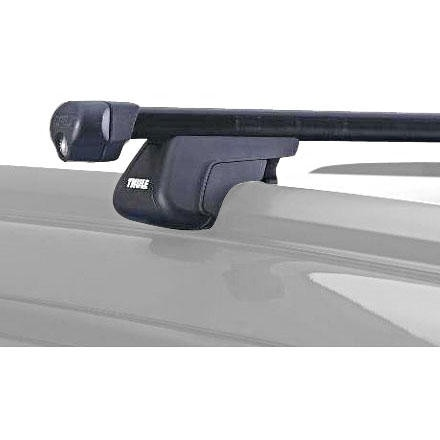 Thule Specialty Railing Carrier with Bars