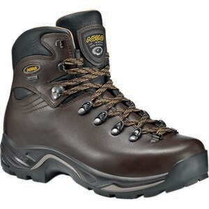 Asolo TPS 520 GV Evo Hiking Boot - Men's