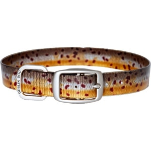 Dublin Dog Trout Dog Collar