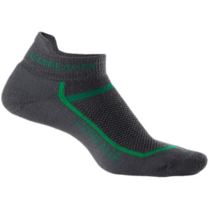 Icebreaker Multisport Cushion Micro Sock - Men's