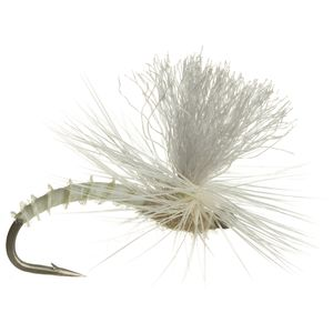 Montana Fly Company Christiaens' GT Adult - 6-Pack