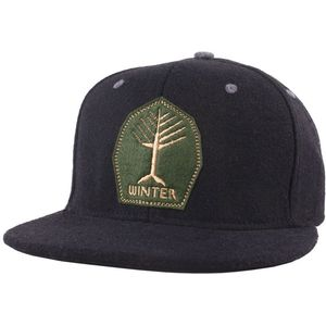 Spacecraft Winters Hat