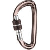 CAMP Photon Screw Gate Carabiner