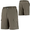 Columbia Silver Ridge Stretch Short