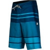 DC Chronicle Board Short - Men's