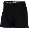 Icebreaker 200 Lightweight Boxer w/Fly