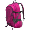 Patagonia Refugio Backpack - 1709cu in Magenta, One Size