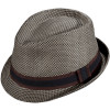 Pistil Hawthorne Fedora