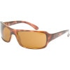 photo: Ray-Ban RB4075