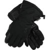 Spyder Poacher Gore-Tex Glove