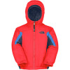 The North Face Out of Bounds Insulated Jacket