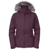 The North Face Greenland Down Jacket - Women's