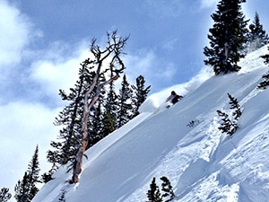 Bear tooth Mountains Skiing
