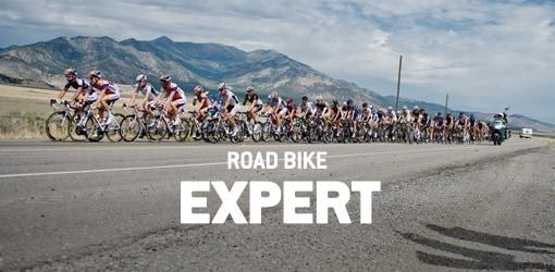RD Expert