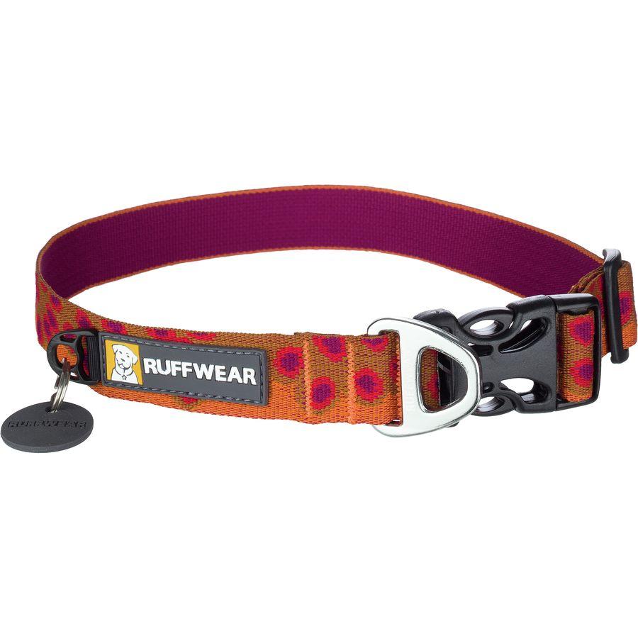 patagonia dog collar