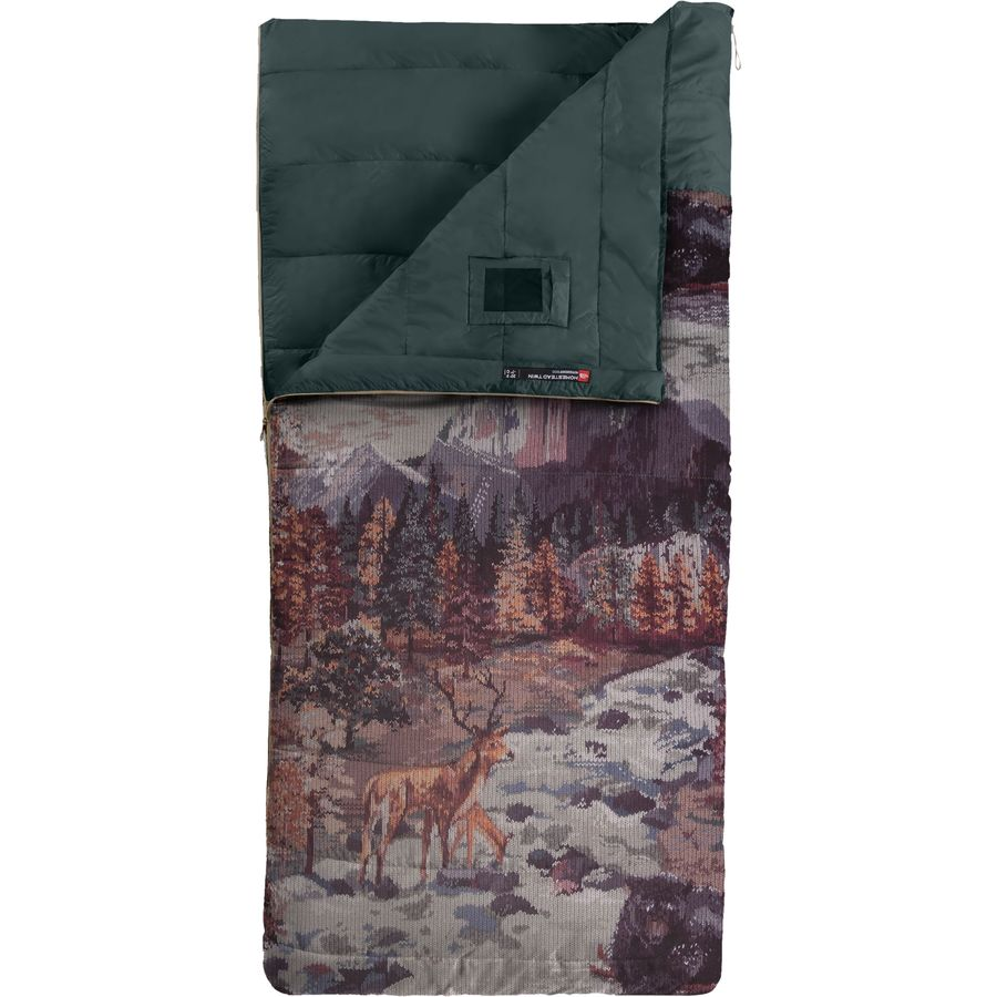 2d3387f31 The North Face Homestead Twin Sleeping Bag: 20 Degree Synthetic