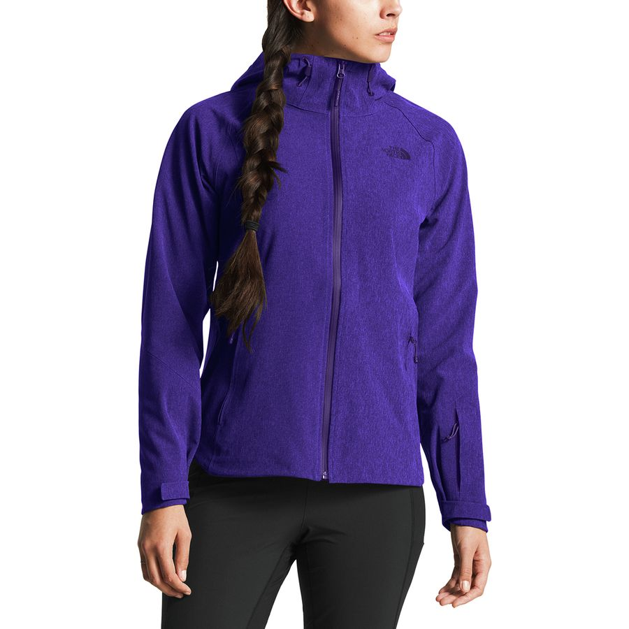 0e70a9bac The North Face Apex Flex GTX Hooded Jacket - Women's
