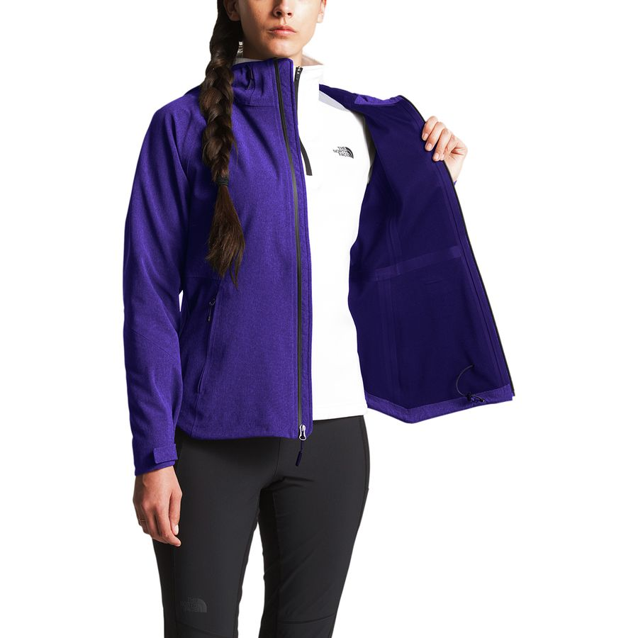 87fd6aa9e5 The North Face Apex Flex GTX Hooded Jacket - Women's | Backcountry.com