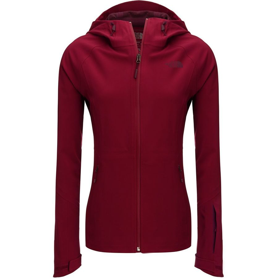 5f9fcd6a2443 The North Face Apex Flex GTX Hooded Jacket - Women s