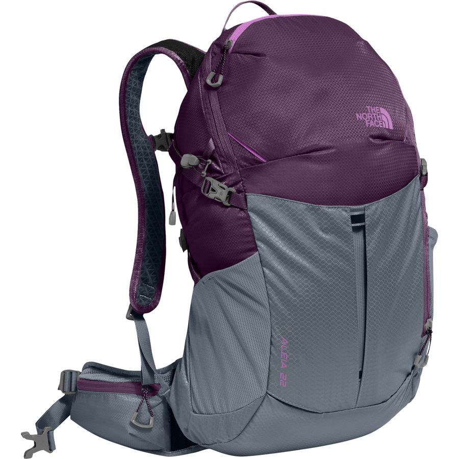 the best attitude b9664 c057a The North Face Aleia 22L Backpack - Women's