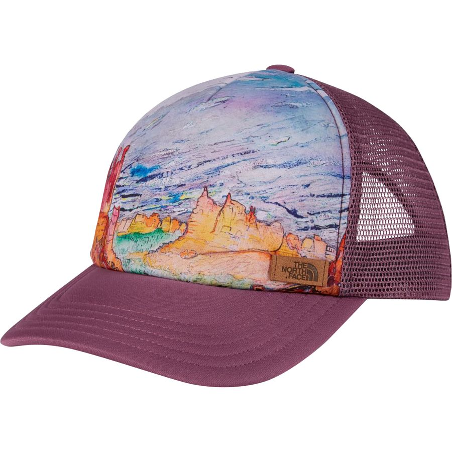 the north face trucker cap