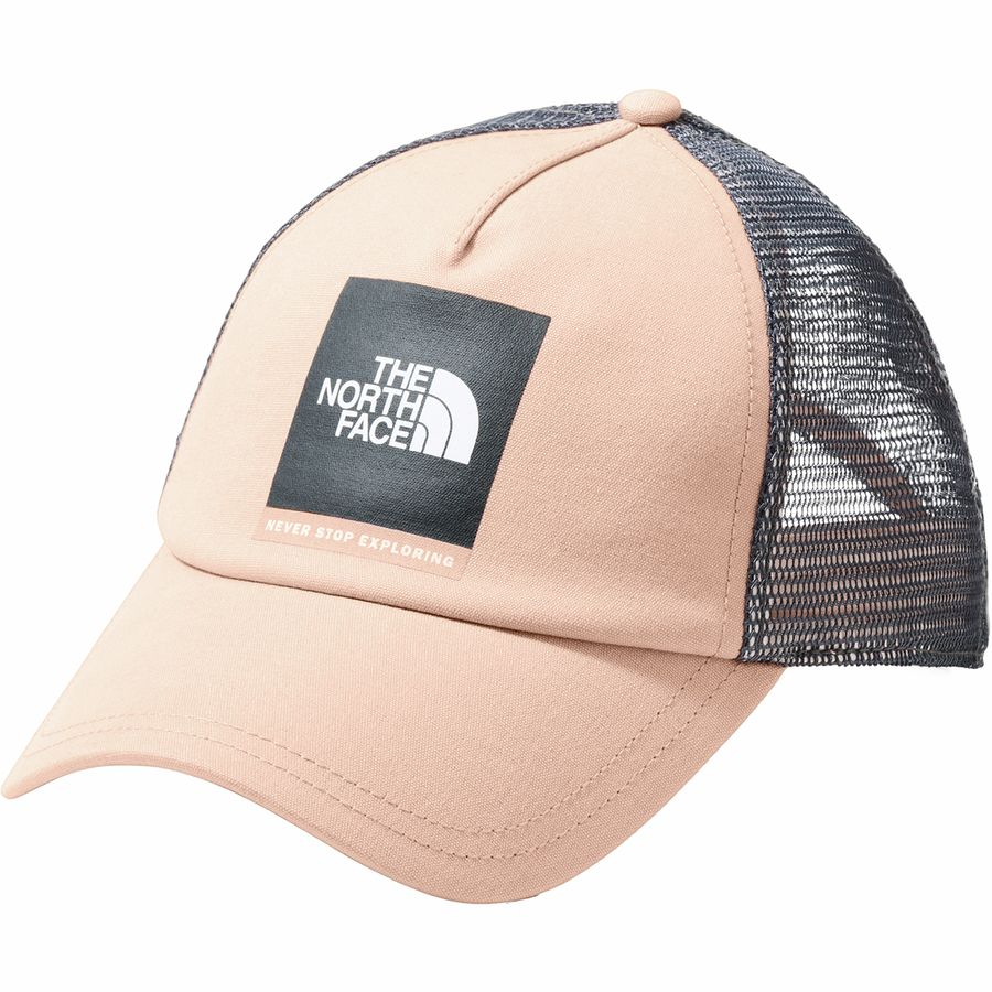 89db9f203 The North Face Low Pro Trucker Hat - Women's