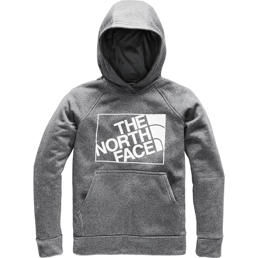 3aa7710b9 The North Face Surgent 2.0 Pullover Hoodie - Boys