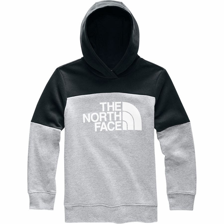 The North Face Boys Logowear Pullover Hoodie
