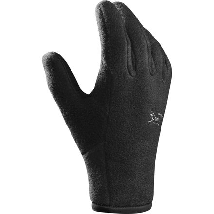 Arc'teryx Delta Glove - Men's