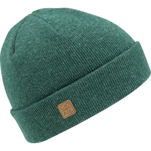 Coal Headwear Harbor Beanie