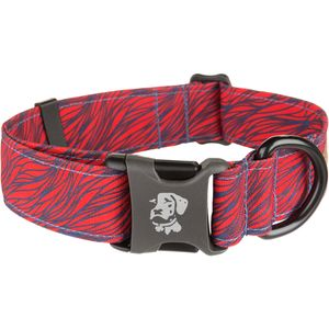 Dublin Dog EcoLucks Elements Collection Dog Collar