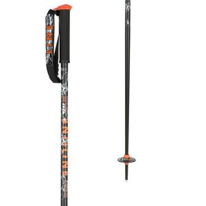 Line Tom Wallischtick Ski Pole