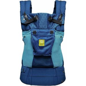 LilleBaby Complete Airflow Child Carrier