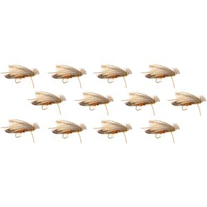 Montana Fly Company Cat Vomit - 12 Pack