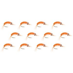 Montana Fly Company BH Scud - 12-Pack
