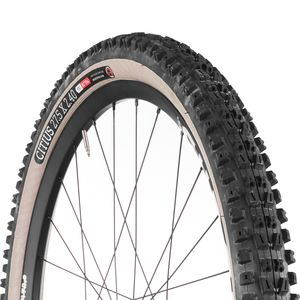 Onza Citius Gumwall Tubeless Tire - 27.5in
