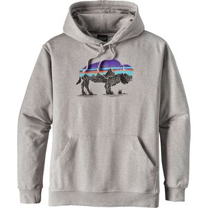 Patagonia Fitz Roy Bison Midweight Pullover Hoodie - Men's