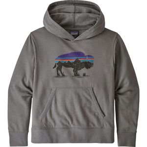Patagonia Lightweight Graphic Hoodie Sweatshirt - Boys'