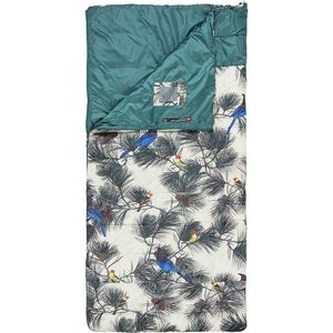 9388071898b The North Face Homestead Twin Sleeping Bag  20 Degree Synthetic