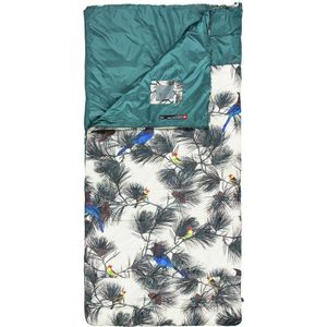 The North Face Homestead Twin Sleeping Bag: 40 Degree Synthetic