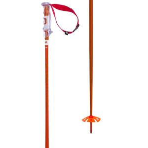 Volkl Phantastick 2 Ski Pole