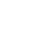 TNF Sale Logo